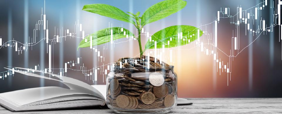 vita-e-prevvidenza-canciani-assicurazioni-previdenza-integrativa-pensionistica-pip